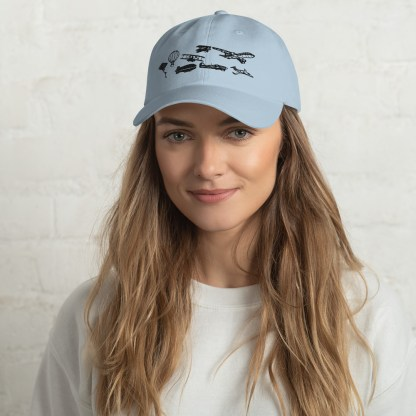 airplaneTees Evolution of Flight Dad hat 5