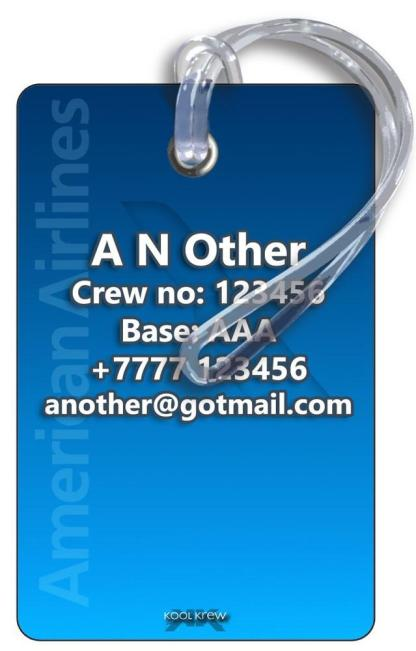 airplaneTees American Airlines Logo Luggage Tag - Landscape 4