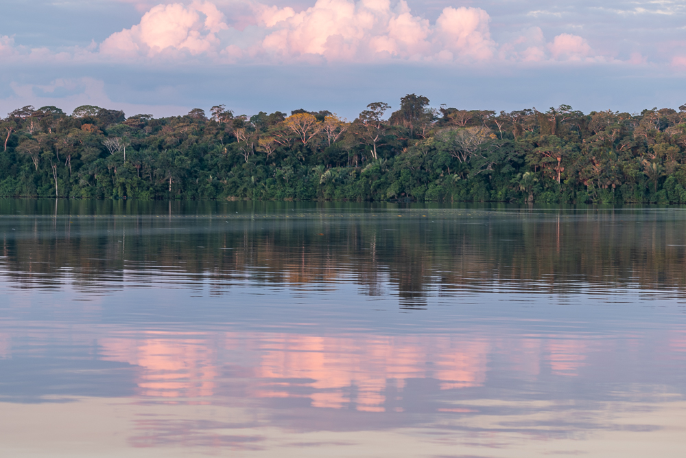 lake sandoval, peruvian amazon