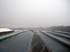 Rain lashing the chicken coop