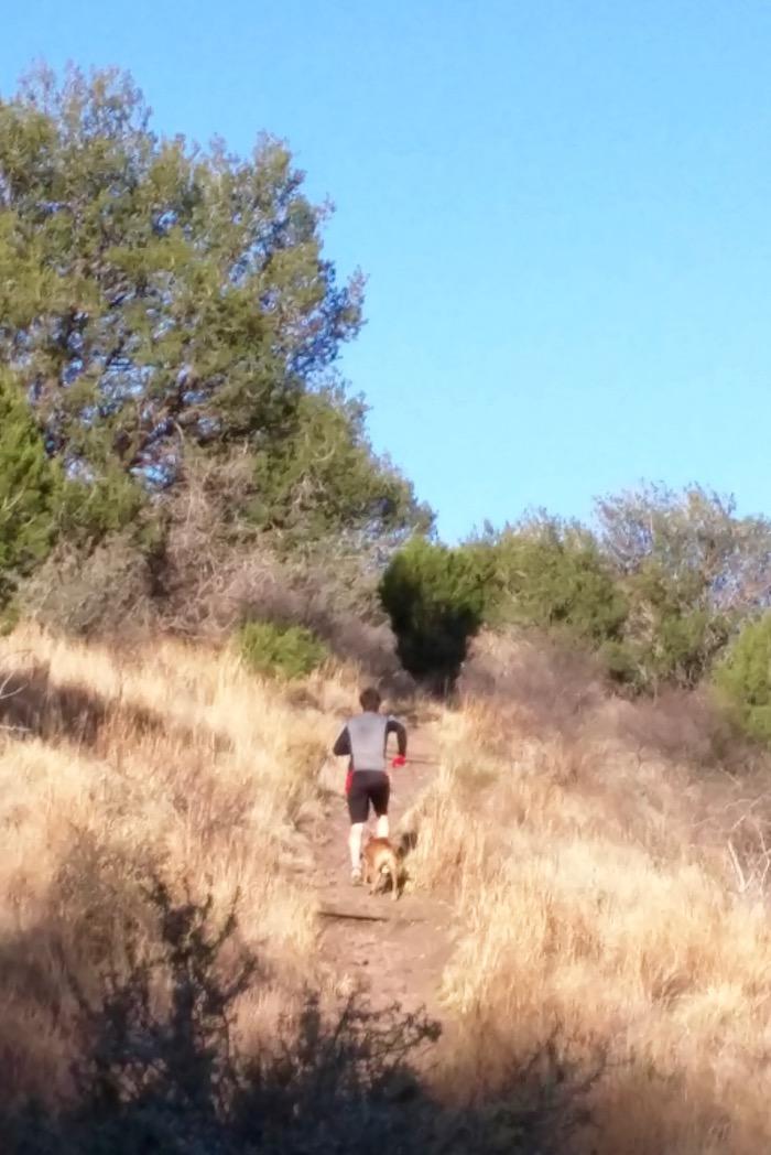 trail running davis mountains state park
