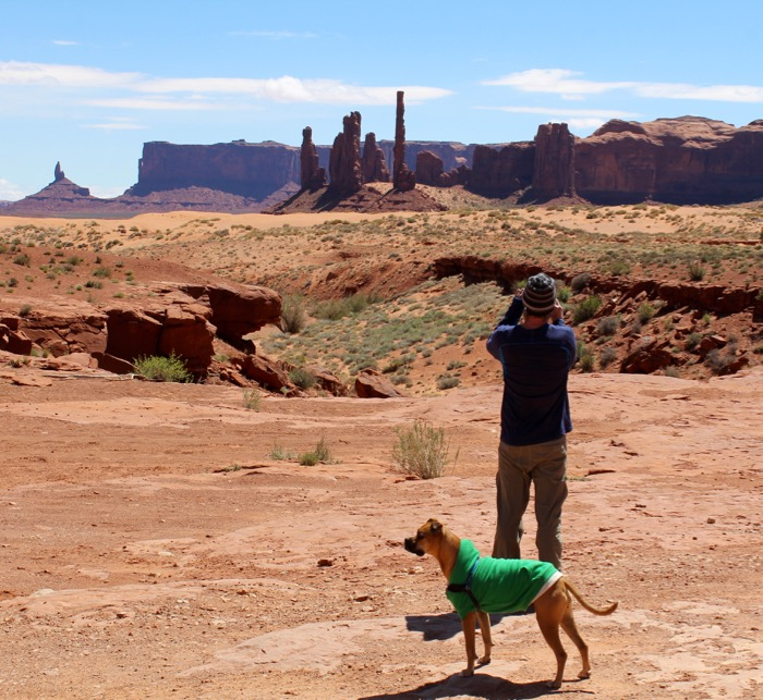 monument valley dog