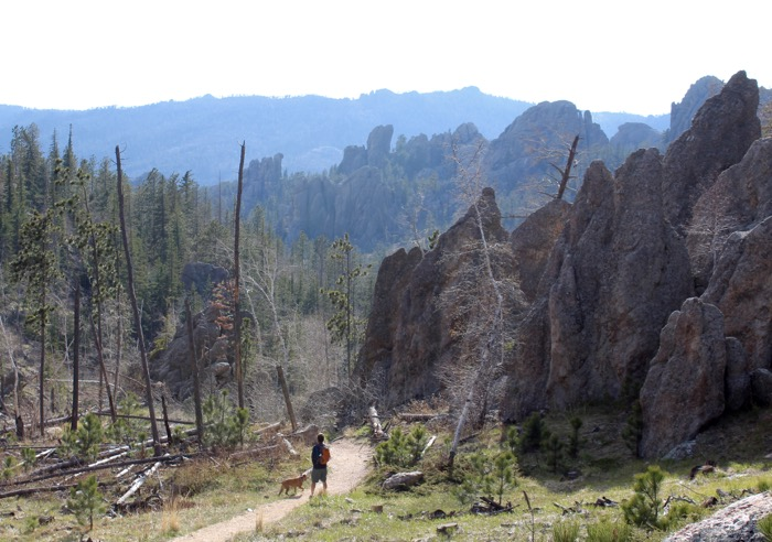 black hills hike with dog