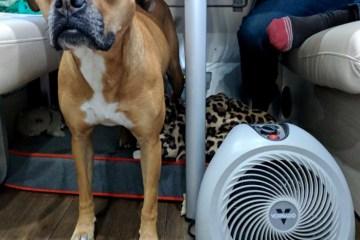 vortex heater