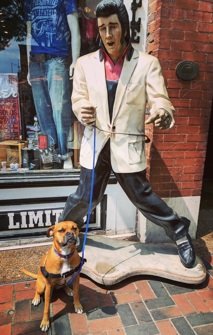 Bugsy and Elvis in Nashville
