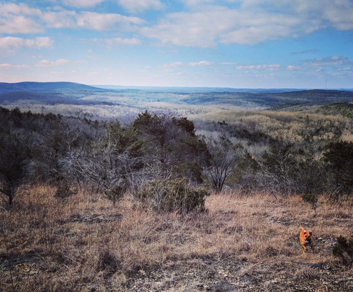 bugsy hiking at coy bald trail branson