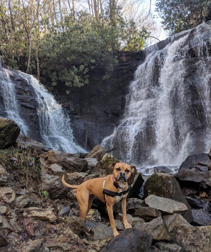soco falls maggie valley