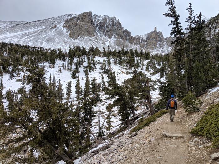 Bristlecone Pine trail Great Basin
