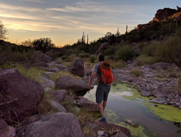 hiking alamo canyon in organ pipe