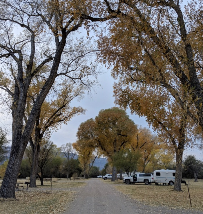 Cottonwood Campground in Big Bend