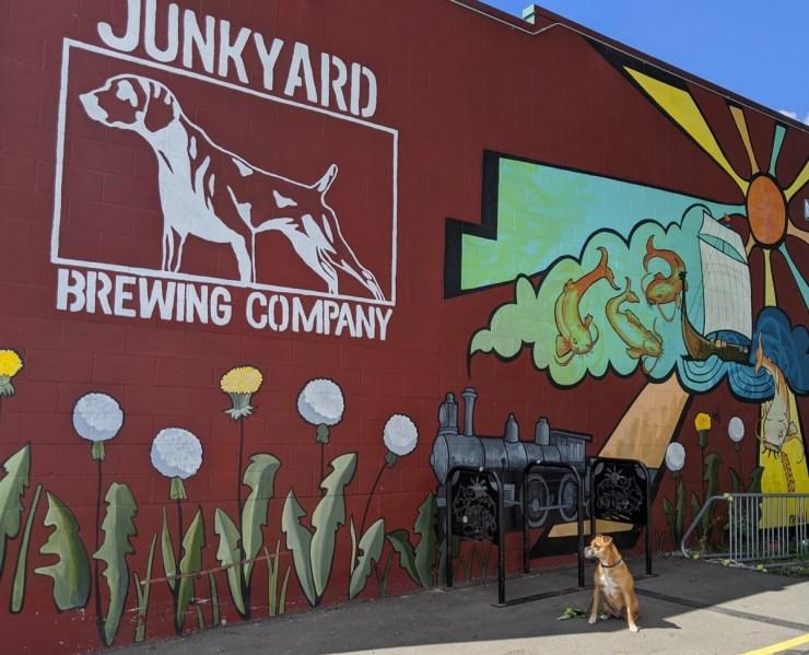 Bugsy by the Junkyard Brewing mural in Moorhead