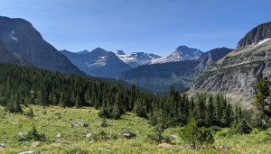 Piegan Pass trail in GNP