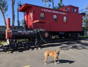 Bugsy and a Montana Western Railway train car