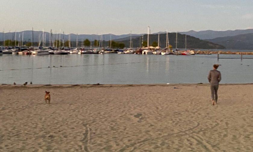 running on the beach in sandpoint