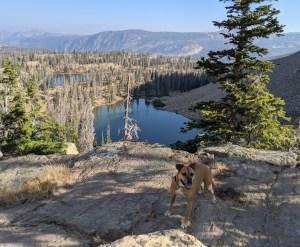 Bugsy hiking around Mirror Lake Rec Area