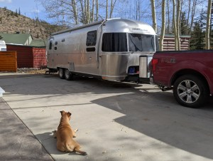 Bugsy and the Airstream at Tiger Run RV resort