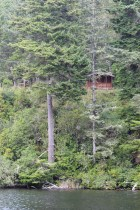 Cabin in the woods, above the lake in Umpqua Lighthouse  SP.
