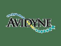 Avidyne_1