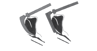Illustration showing difference between straight and curved blades.