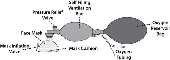 Illustration showing the components of a Self Inflating Bag