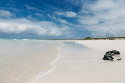 Galapagos-Tortuga-Bay-Turtle-Reserve,Top 10 Beaches in The World 2017