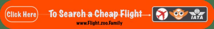 www.flight.zoo.family