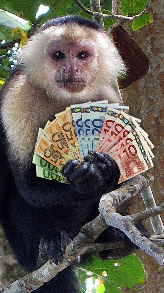 Gib dem Affen Zaster  Bildung  Wissen  Badische Zeitung