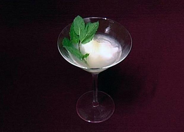 Zitronensorbet mit Limoncello und Wodka Niels Ruf