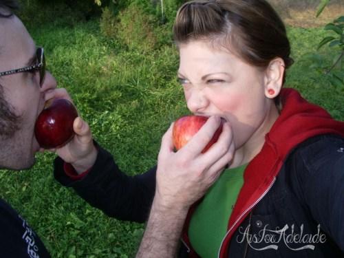 2008 apple picking