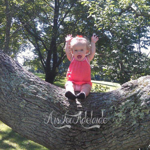 Addie in the Tree