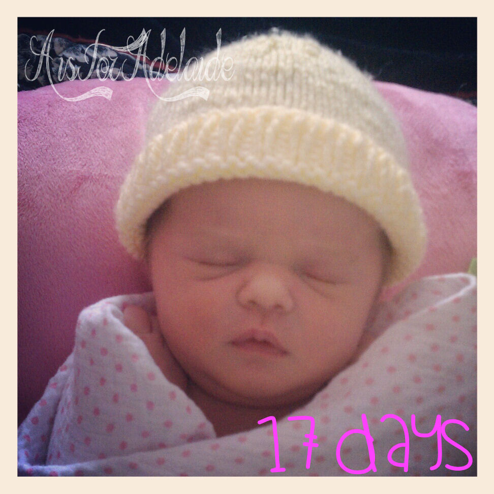 Addie17Days