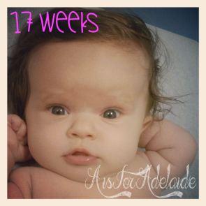 Addie17weeks