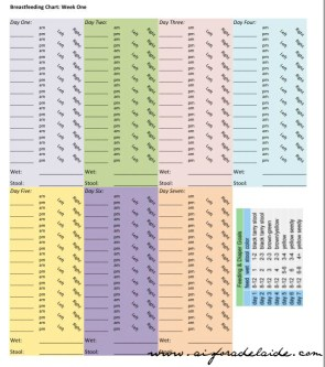#aisforadelaide Breastfeeding Chart #camillethea #pregnancy #birth
