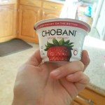3 day refresh snack yogurt