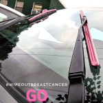 #WipeOutBreastCancer