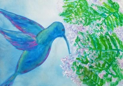 Hummingbird Jacaranda