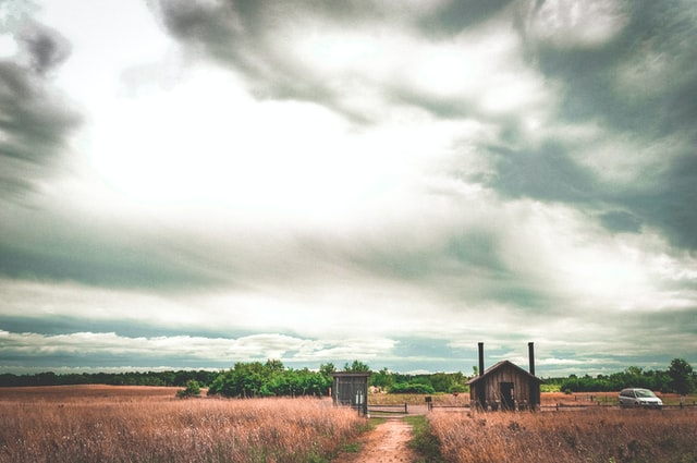 15/1/2021 – CFP: The Pastoral: New Trajectories in the Anthropocene