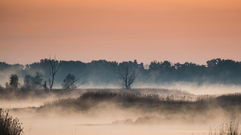 Wetterlexikon Nebel  wetterde