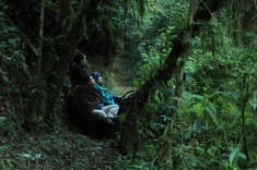 Waiting for the Quetzal (Stephanie, Ingrid and Becca)