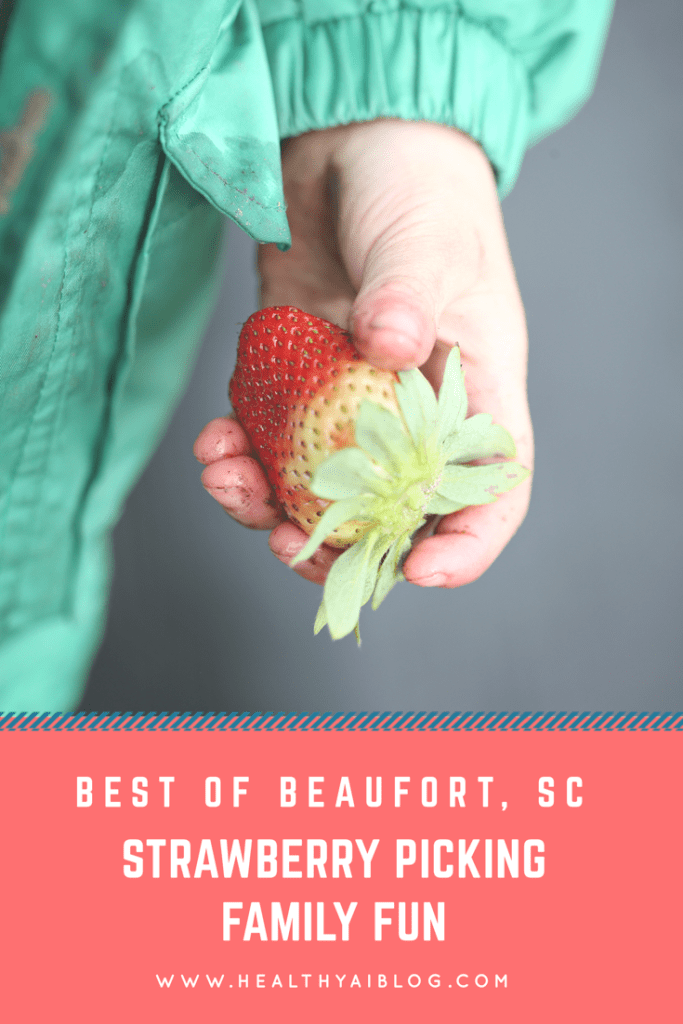 Best of Beaufort, SC: Strawberry Picking Family Fun healthyaiblog.com