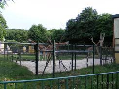 Fauna-Schonbrunn_0115