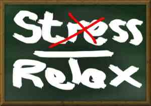 stress-relax-854