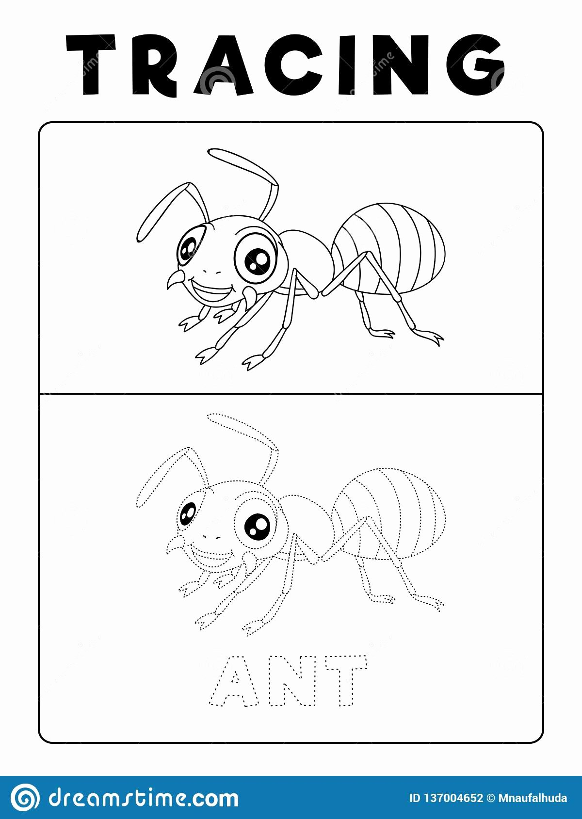 Insects Worksheets For Preschoolers