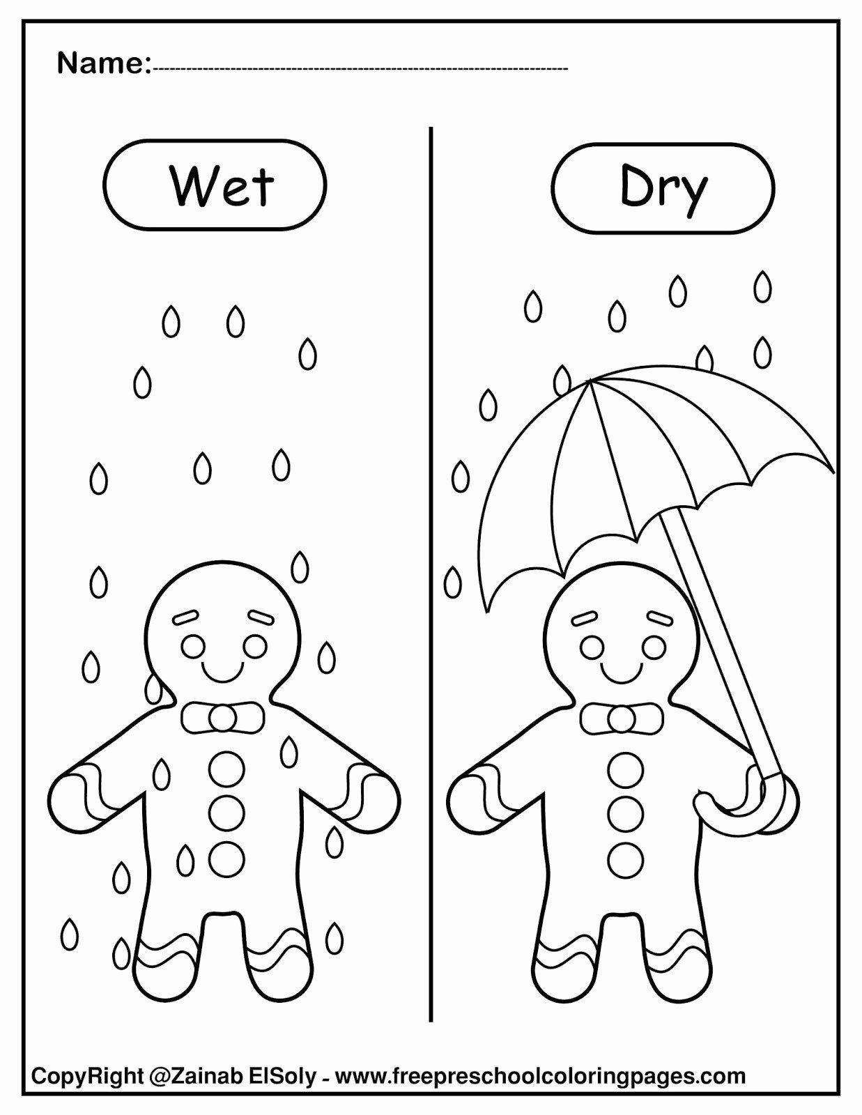 Opposite Worksheets For Preschoolers