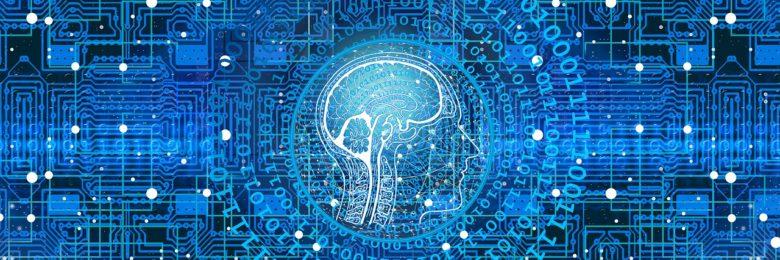 脳の画像 月守ワーク