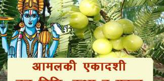 Amalaki-Ekadashi-Vrat-in-hindi