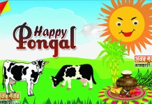 Pongal wishes quotes in hindi