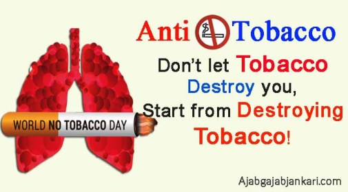 anti smoking slogans and posters