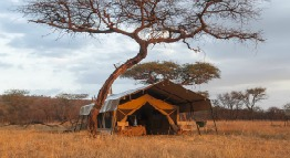 kati kati camp central serengeti tanzania private holidays