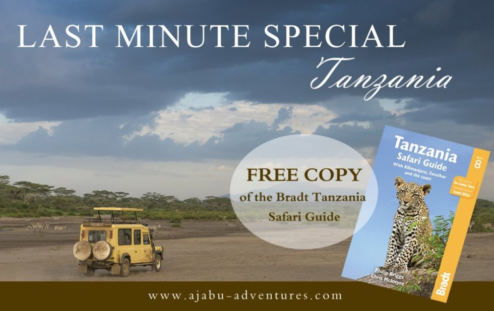 October Safari – Last Minute Special Offer